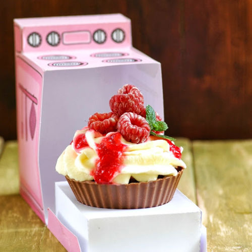 Chocolate & Raspberry cupcakes2