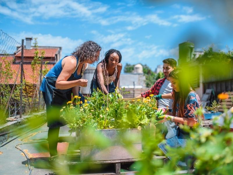 Urban gardening uberblick